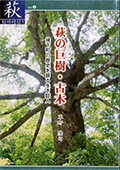 萩の巨樹・古木